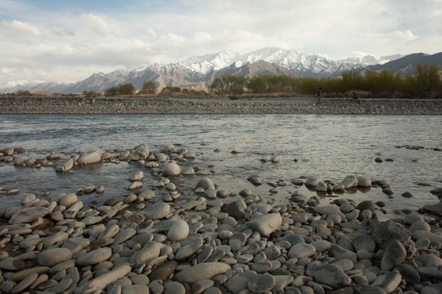 Spring in Ladakh