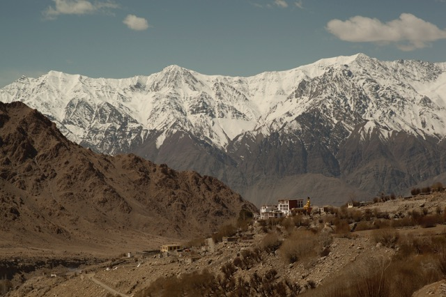 Sping in Ladakh